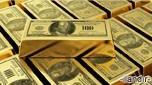 Altına Çift Yönlü Yatırım Yapın