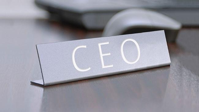 En seksi ve en zengin 10 kadın CEO