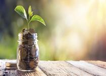 Emeklilik BES-Gönüllü fonlarında 06/07/2018 itibari ile toplam 263 fondan 201 tanesi yükselirken 59 tanesi değer kaybetti.