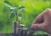Yatırım fonlarında 12/07/2018 itibari ile toplam 331 fondan 154 tanesi yükselirken 177 tanesi değer kaybetti.