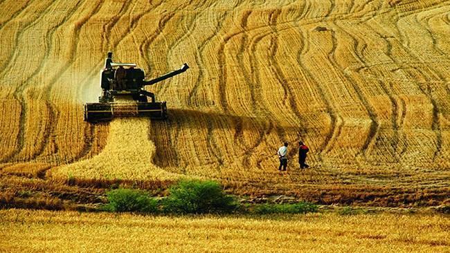 Tarıma dayalı yatırım projelerinde süre uzatıldı | Ekonomi Haberleri