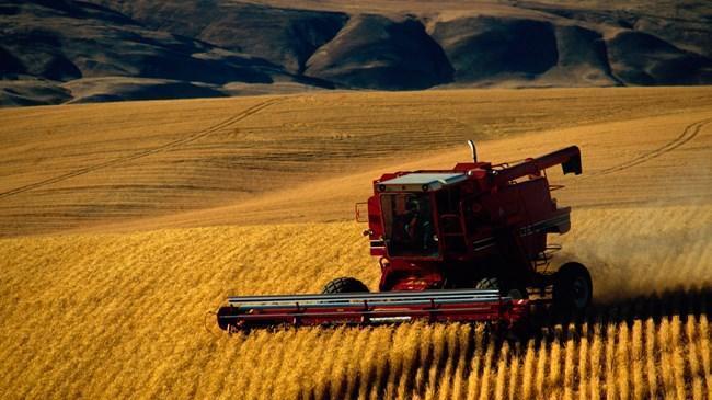Tarım ÜFE şubat ayında yükseldi | Ekonomi Haberleri