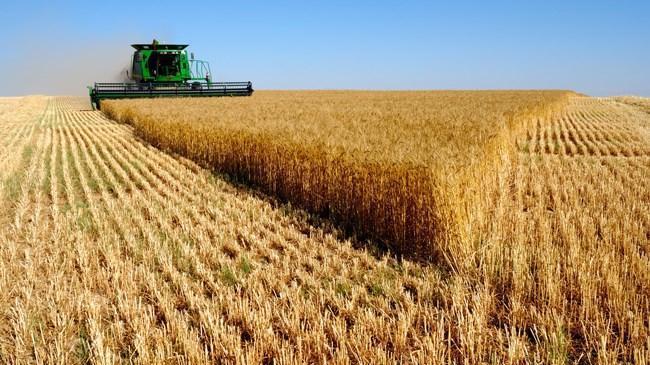 Tarım ÜFE eylül verileri açıklandı | Ekonomi Haberleri