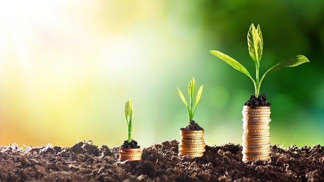 Ne dolar ne faiz en yüksek getiri BES'te | Piyasa Haberleri