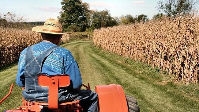 Çiftçiye 'destek' uyarısı | Teşvik Haberleri