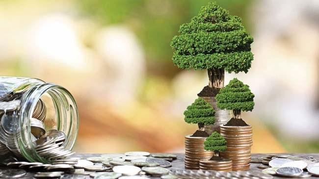 263 fondan 235 tanesi yükseldi | Bes Haberleri