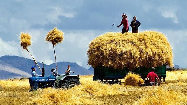 Tarımda 82 milyar TL kredi kullandırıldı | Şirket Haberleri