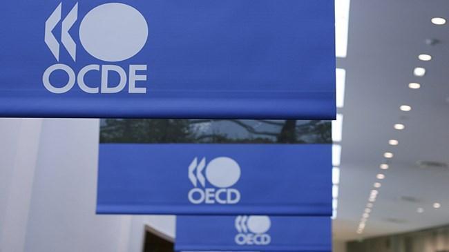 OECD, GSYH büyümesi yüzde 0.3'e geriledi | Ekonomi Haberleri