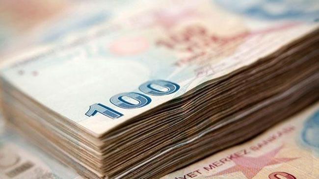 Hazine 2,4 milyar lira borçlandı | Ekonomi Haberleri