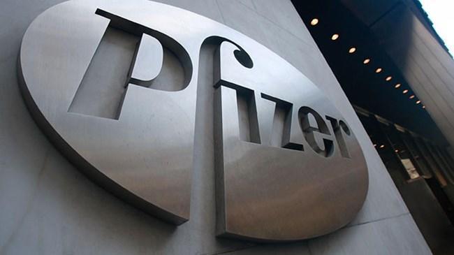 Pfizer'den dev satın alma   Ekonomi Haberleri