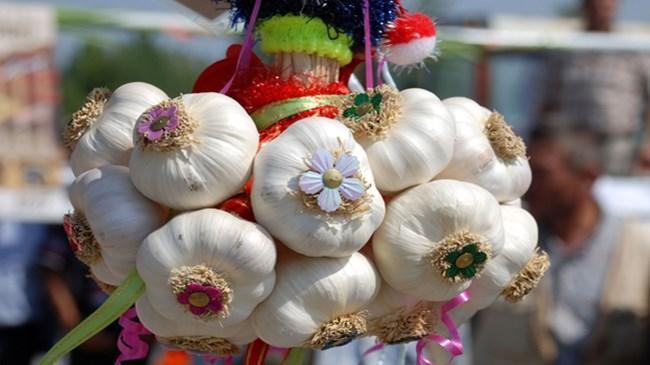 'Beyaz altın' Araban sarımsağında hasat heyecanı | Sektör Haberleri