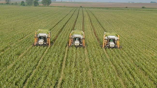 Muş'ta 550 çiftçinin 3,5 milyon liralık borcu silindi | Sektör Haberleri