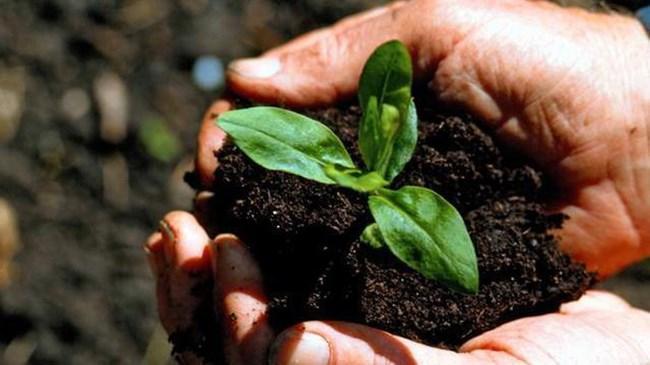 Bitki koruma ürünlerine karekodlu takip   Sektör Haberleri