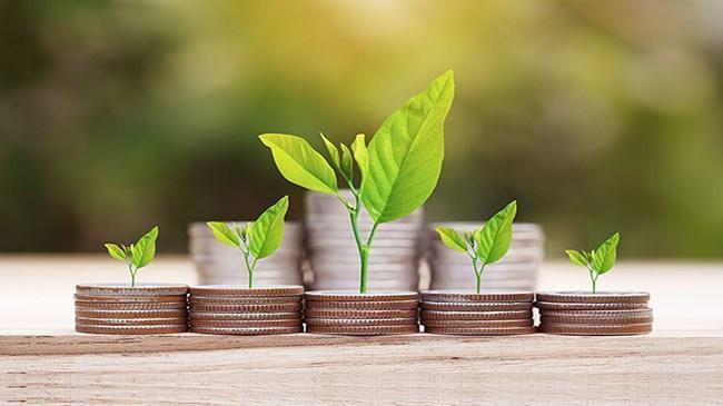 Yatırım fonlarında yatırımcı sayısı 3.6 milyonu aştı | Bes Haberleri