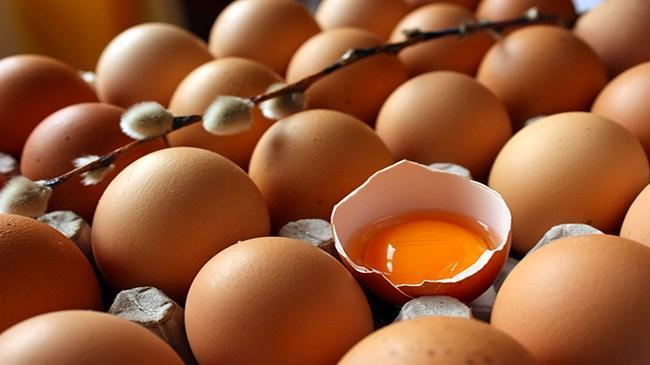 Yumurta üreticilerinden indirim uyarısı | Sektör Haberleri